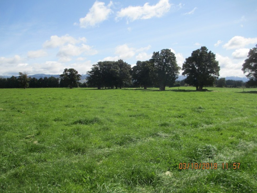 75362 State Highway and 236 Manawatu River Rd, Norsewood