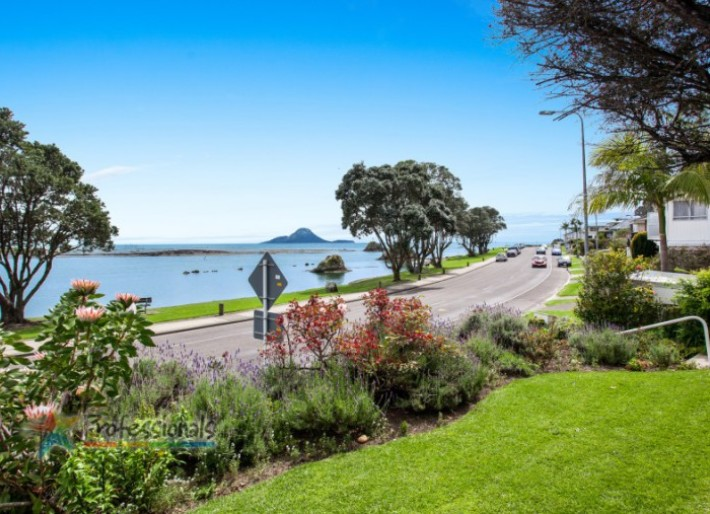 Homes For Sale In Tauranga New Zealand