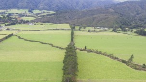 Lot 3 Kiwi Ranch Road, Kaitoke