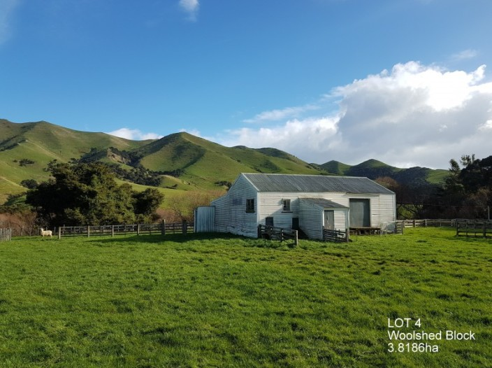 508-lot-4-longbush-road-martinborough-