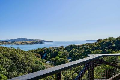 29-the-track-plimmerton