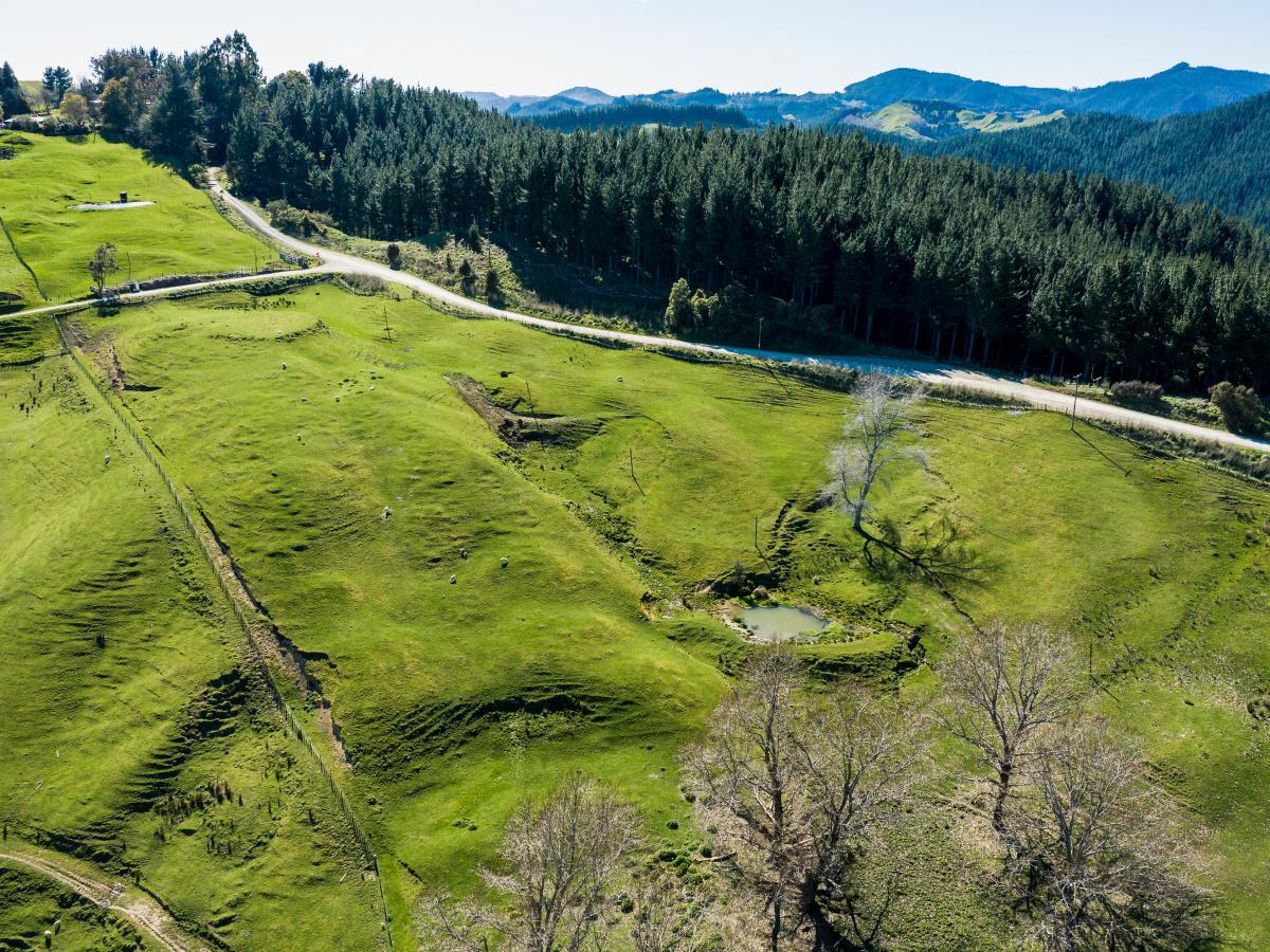 Lot 2 Kanakanaia Road, Whatatutu