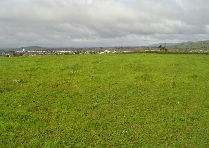 Lot 8 Sunridge Park Road, Morrinsville