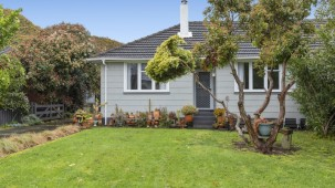 393 Cambridge Terrace, Naenae