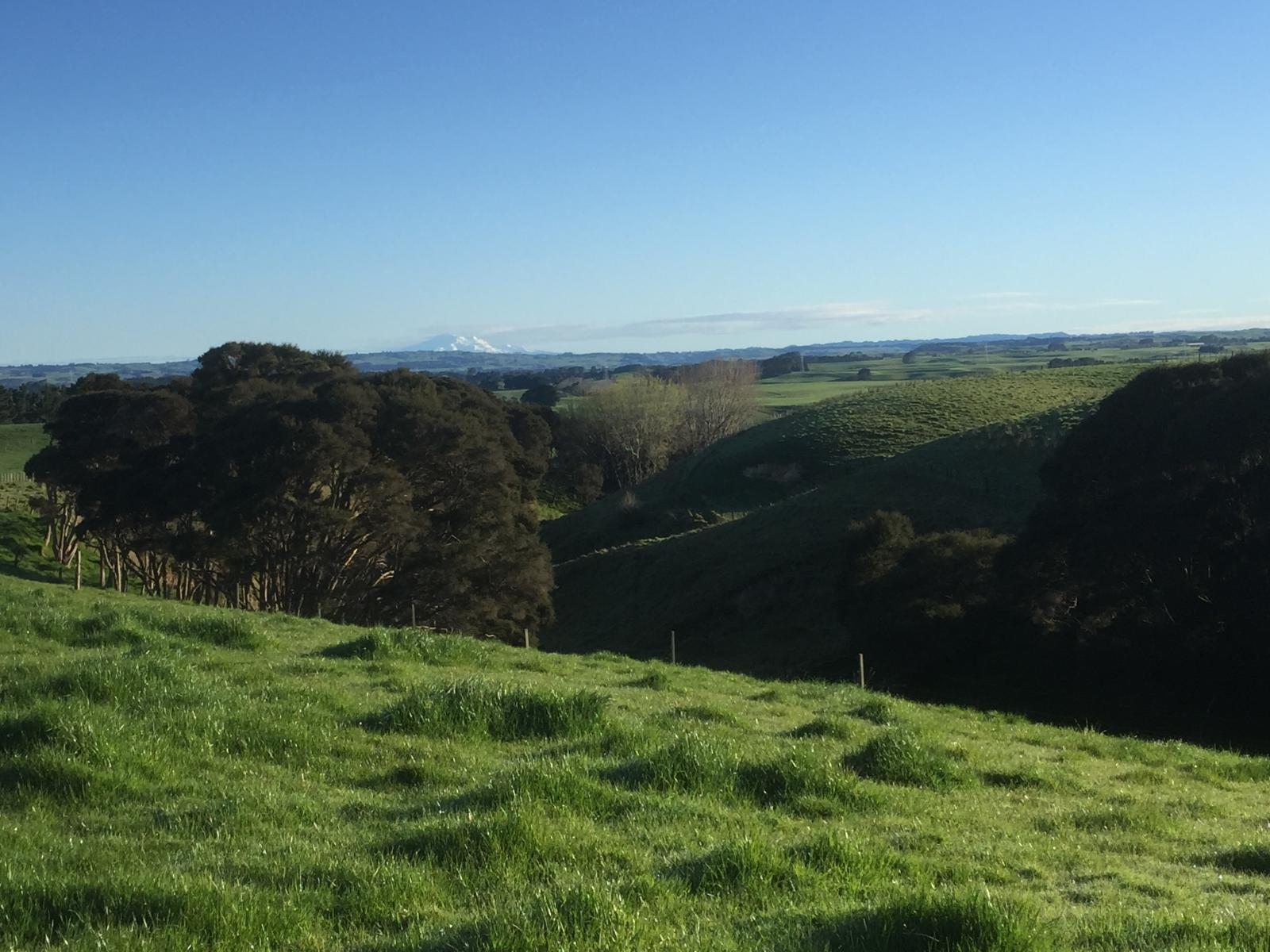 Lot 3, Mt Biggs Road, Halcombe