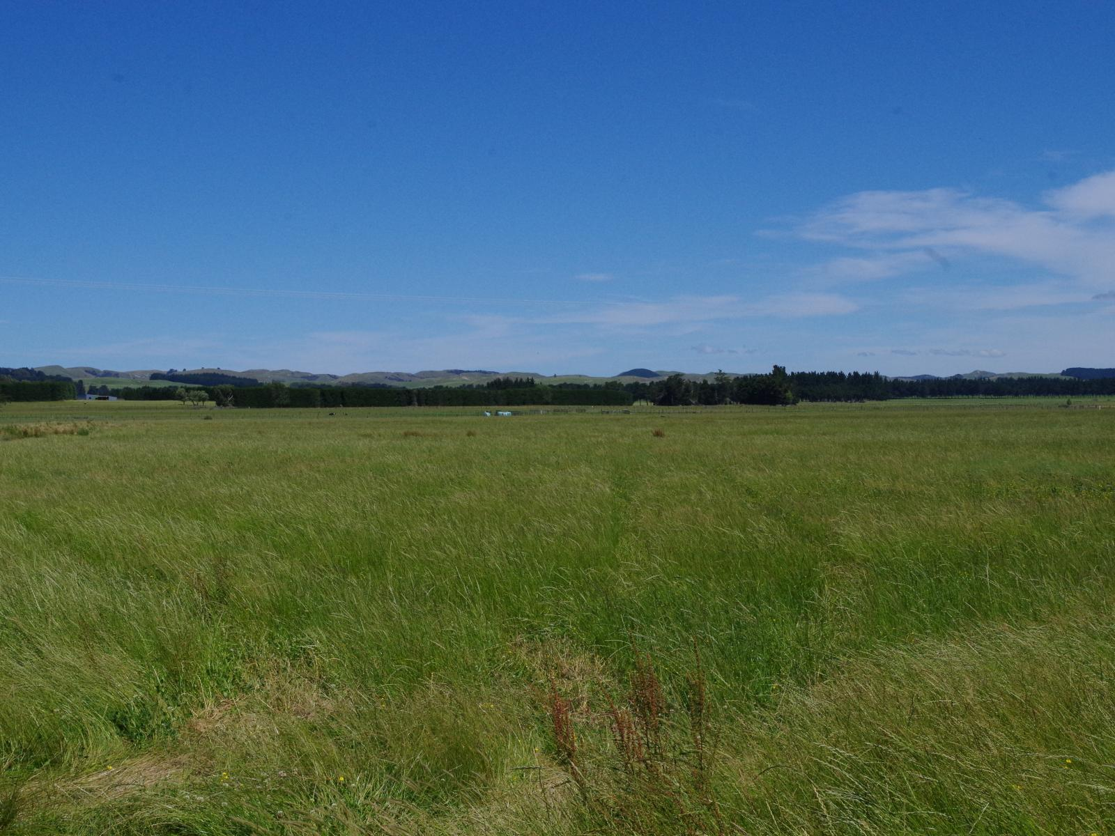 Lot 3, 24 Farm Road, Waipukurau