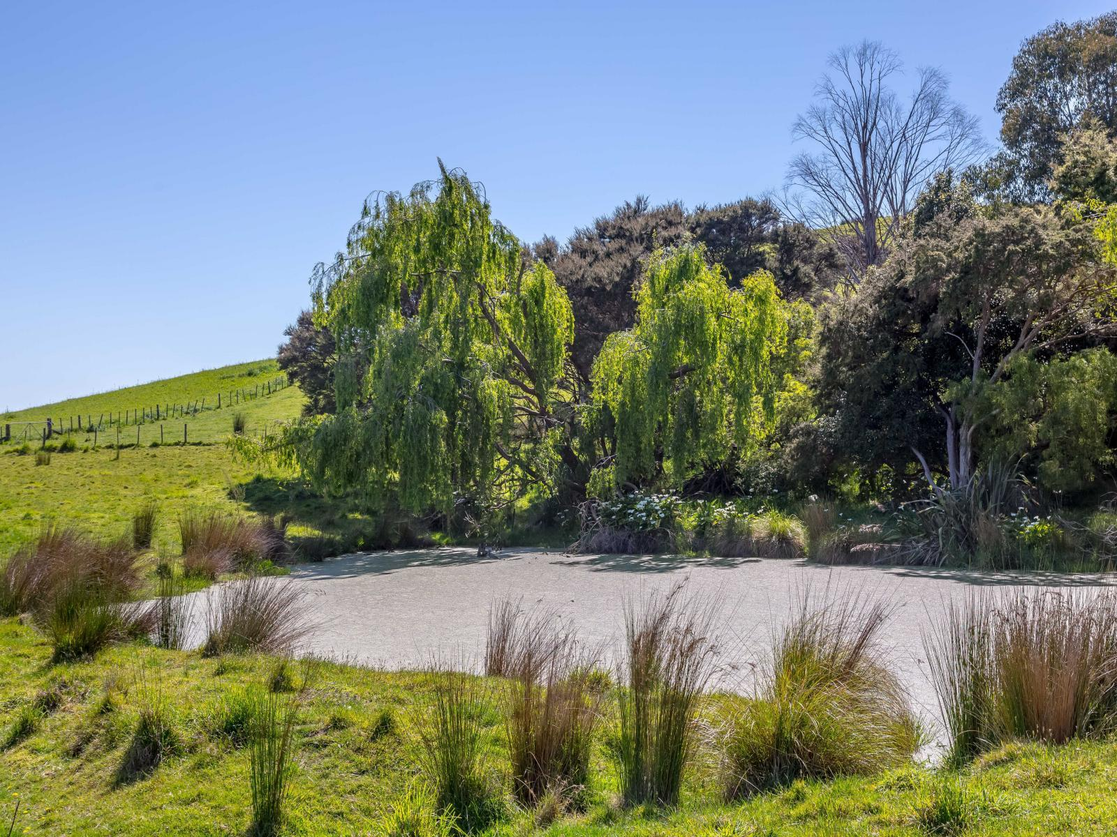 5, 1075 Lake Ferry Road, Martinborough