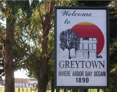 Greytown Area Info 3