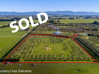 7, 239 Lake Ferry Road, Martinborough