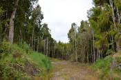 Lot 15 Sunset Heights Road, Karamea