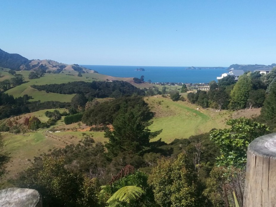5a and 5b Tarapatiki Drive, Whitianga