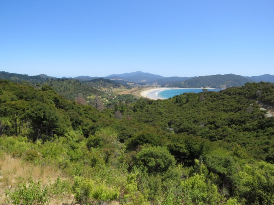 Lot 2, 891 Tuateawa Road, Coromandel