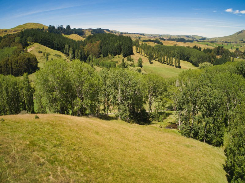 567 Maraetotara Road, Havelock North